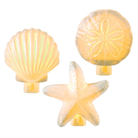 Beach Shell Night Lights, 3 To Choose From!